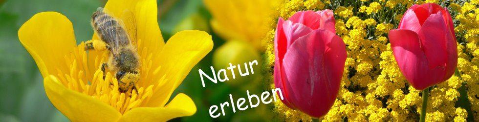 Wellnessurlaub und Natururlaub