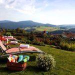 eder-landhotel-wellnessurlaub-bayerischer-wald-landschaft-relaxen-ausblick-1100