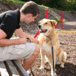 waldeck-wellnesshotel-hundefreundlich-bayern-urlaub-mit-hund-1100